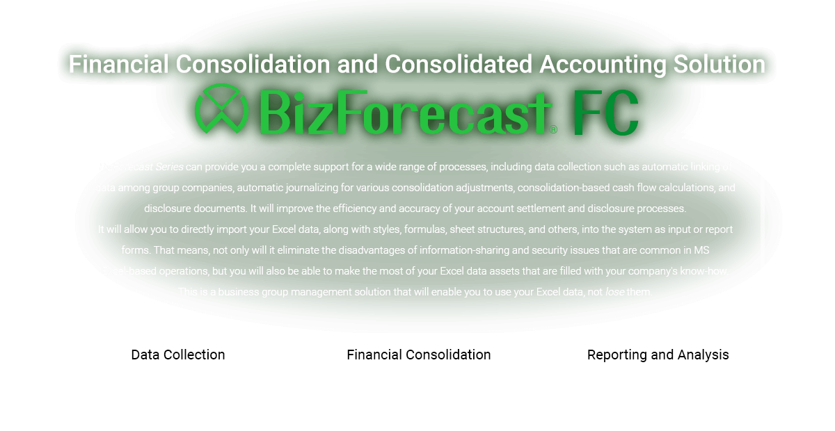 Financial Consolidation and Consolidated Accounting Solution BizForecast FC